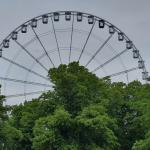 12 neue Corona-Fälle in Sachsen-Anhalt, 9 davon in Magdeburg