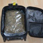 8 Kilo Drogen und Waffen bei Wohnungsdurchsuchungen in Magdeburg und Sangerhausen entdeckt