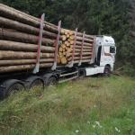 Holztransporter landet bei Drei Annen Hohne im Harz im Straßengraben, Fahrer schwer verletzt