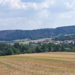 363 neue Infektionsfälle für Sachsen-Anhalt gemeldet, 9 neue Todesfälle