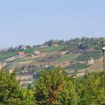 37 neue Corona-Fälle in Sachsen-Anhalt, davon 15 im Burgenlandkreis