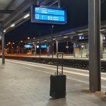 Herrenloser Koffer am Hauptbahnhof in Magdeburg -Spürhund finden keinen Sprengstoff - Vergesslicher Reisender meldet sich