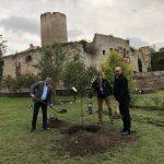 Baumpflanzung an der Burg Querfurt