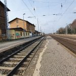 Wolf in Jessen wird von Regionalbahn getötet
