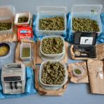 Drogendealer in Dessau-Roßlau gefasst - 2,3kg Marihuana sichergestellt