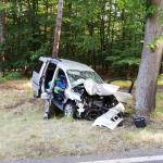 Ungebremst gegen Baum: tödlicher Unfall zwischen Leppin und Tannenkrug im Landkreis Stendal