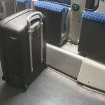 Herrenloser Koffer im Regionalexpress Magdeburg-Berlin sorgt für Einsatz von Sprengstoffhund